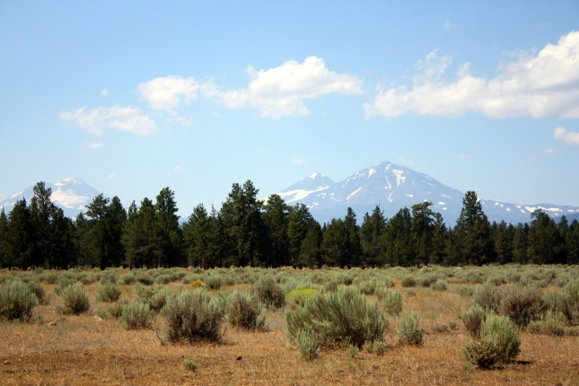 a view of the Three Sisters across a ranch outside Sisters, Oregon (c2013, KB)